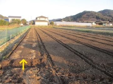 農園準備25年度10