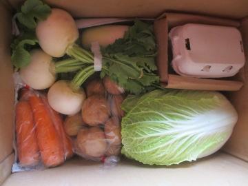 やさい玉子さんのお野菜2