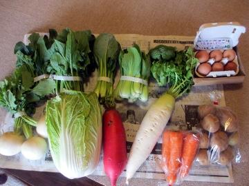 やさい玉子さんのお野菜3