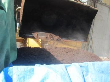 一日堆肥撒き3