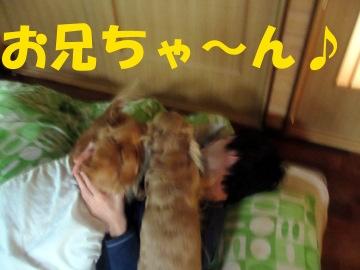起きて~2