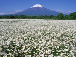 富士山3_convert_20120706105213