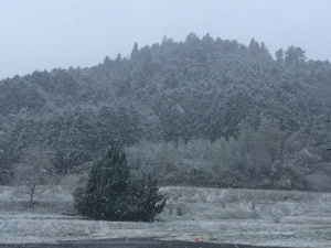 雪 (300x225)