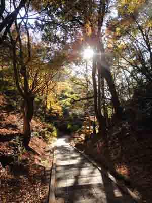 高取山登山道