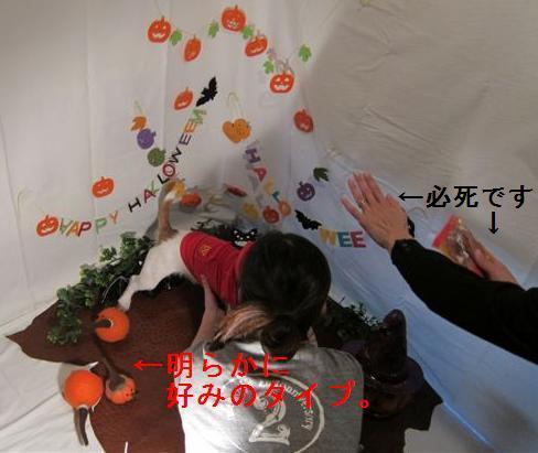 hw1_20121031160103.jpg