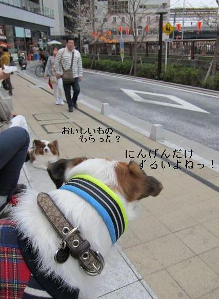 nakame1.jpg