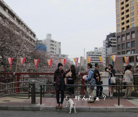nakame3.jpg