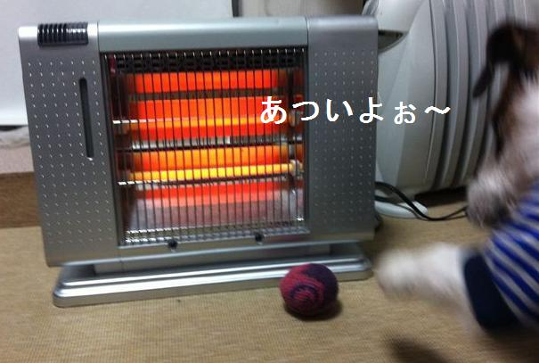 st1_20130109172342.jpg