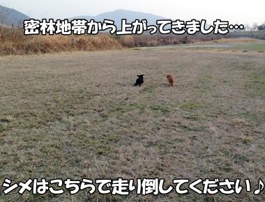 2013031111.jpg