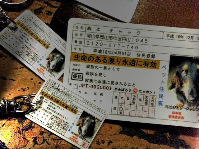 DSC_0109m - コピー