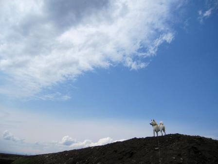 空とオレー(マンネリ化・・・)