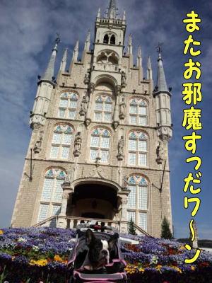 12_10_4_5.jpg