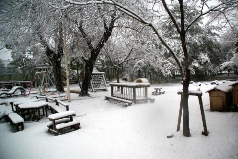 DSC02915雪4