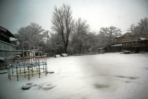 DSC02913雪2