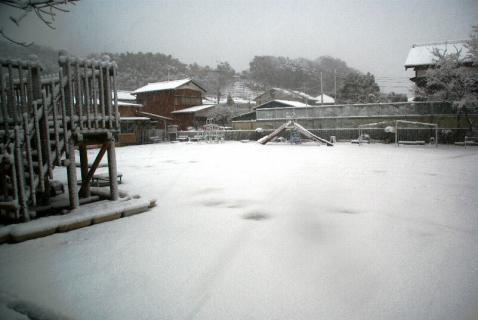 DSC02917雪5