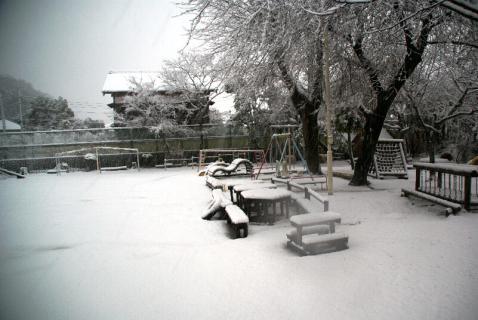DSC02916雪7