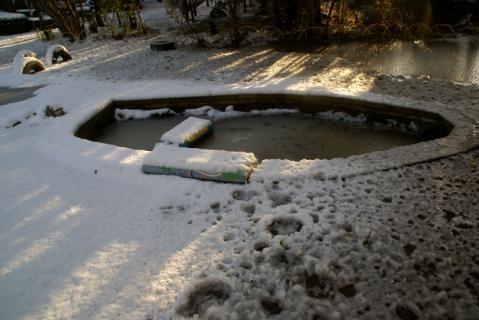 2006-08-16 24年度雪遊び1月15日 014 (800x534)