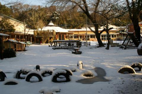 2006-08-16 24年度雪遊び1月15日 016 (800x534)