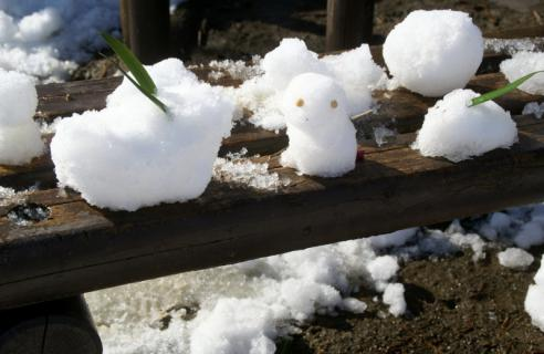 2006-08-16 24年度雪遊び1月15日 067 (800x520)