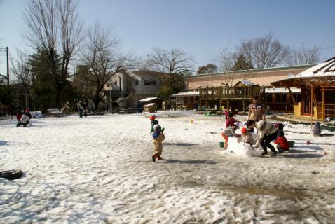 2006-08-16 24年度雪遊び1月15日 074 (800x535)