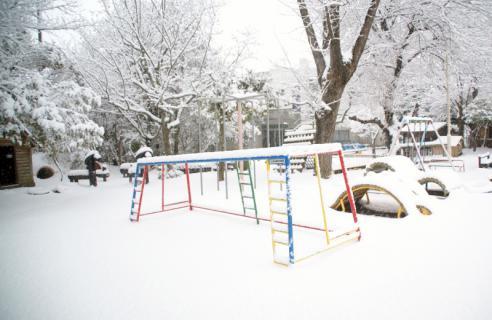 2006-08-29 24年度雪遊び25年1月28日 015 (800x520)