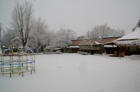 2006-08-29 24年度雪遊び25年1月28日 003 (800x523)