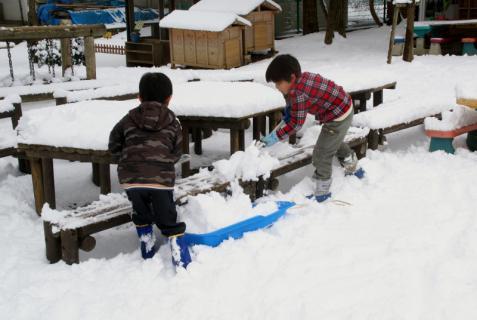 2006-08-29 24年度雪遊び25年1月28日 045 (800x536)