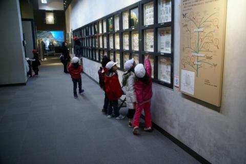 2006-09-15 24年度青組中央博物館2月14日 025 (800x533)