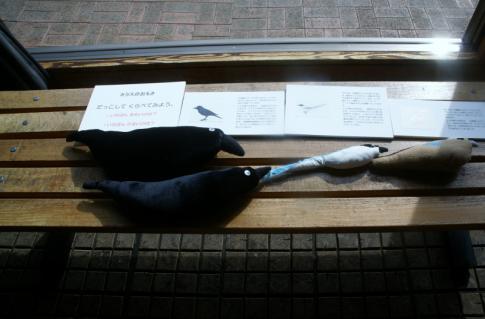 2006-09-15 24年度青組中央博物館2月14日 051 (800x527)