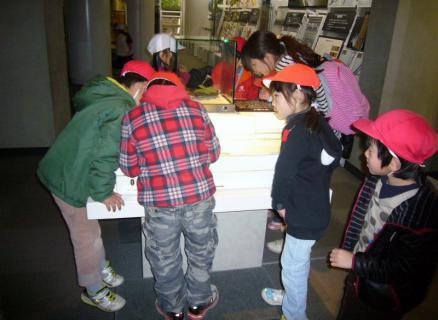 2013-02-14 24年度青組中央博物館2月14日 016 (800x584)