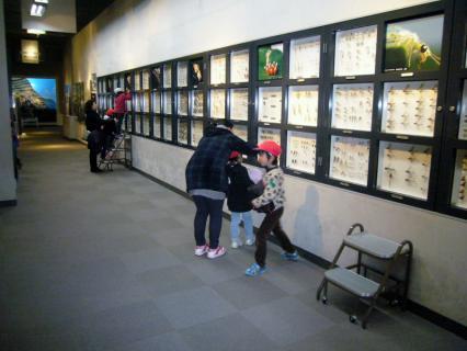 2013-02-14 24年度青組中央博物館2月14日 044 (800x600)