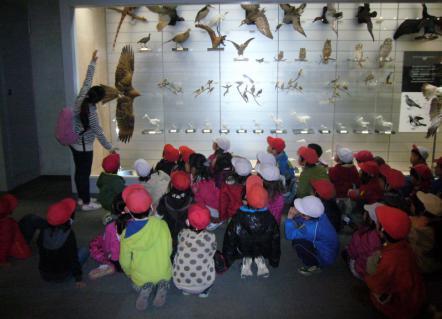 2013-02-14 24年度青組中央博物館2月14日 053 (800x578)