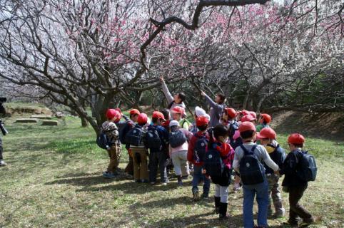 2006-10-12 24年度キュボロ、お別れ遠足城址公園3月13日 032 (800x531)