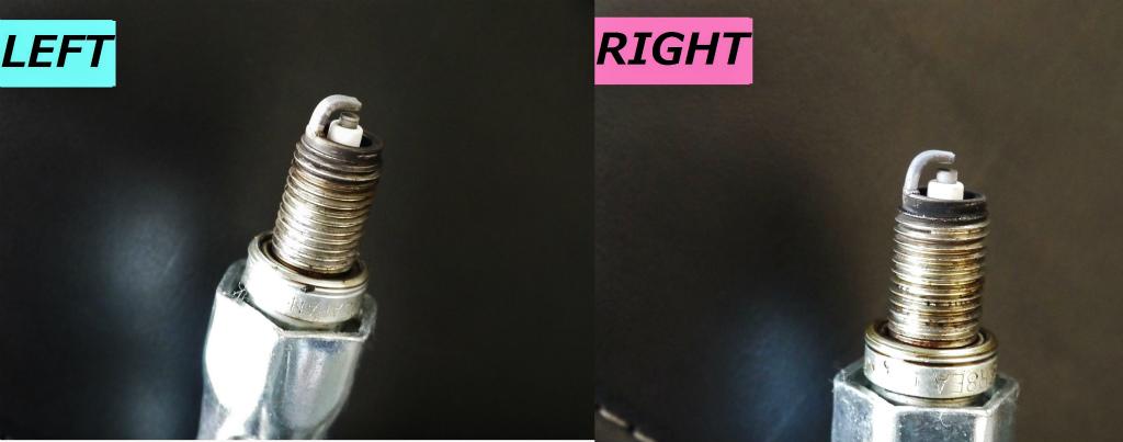 LEFT_right.jpg