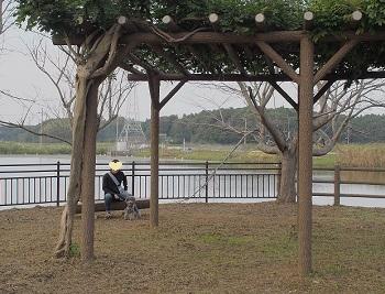 守谷城址公園23