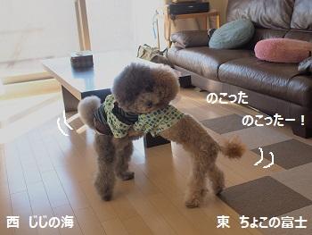 といぷー相撲部2