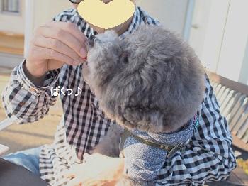 じゅあん6