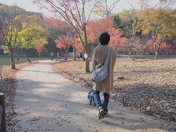 北山公園紅葉3