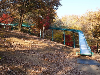 北山公園紅葉14