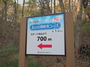 北山公園紅葉22
