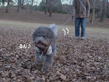 柏の葉公園その2