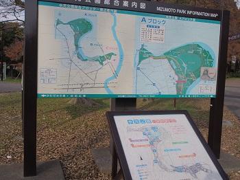 水元公園-2