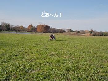 水元公園-11