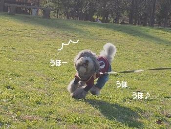 水元公園-12