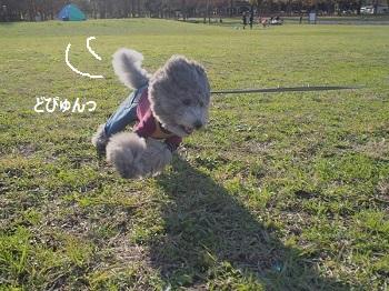 水元公園-13
