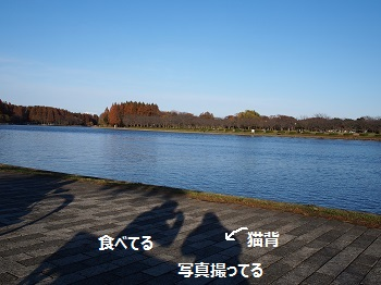 水元公園-34