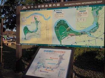 水元公園-37