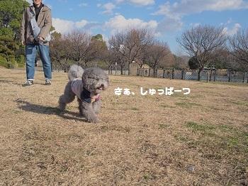 こうえん20141213-2