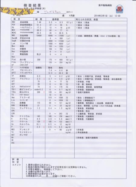 繧、繝。繝シ繧ク+(3)_convert_20140205133816