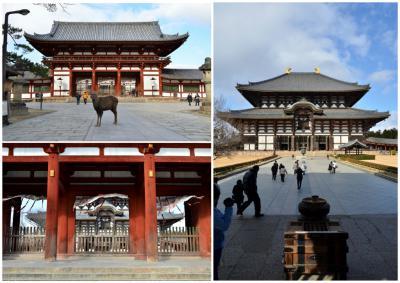 東大寺画像